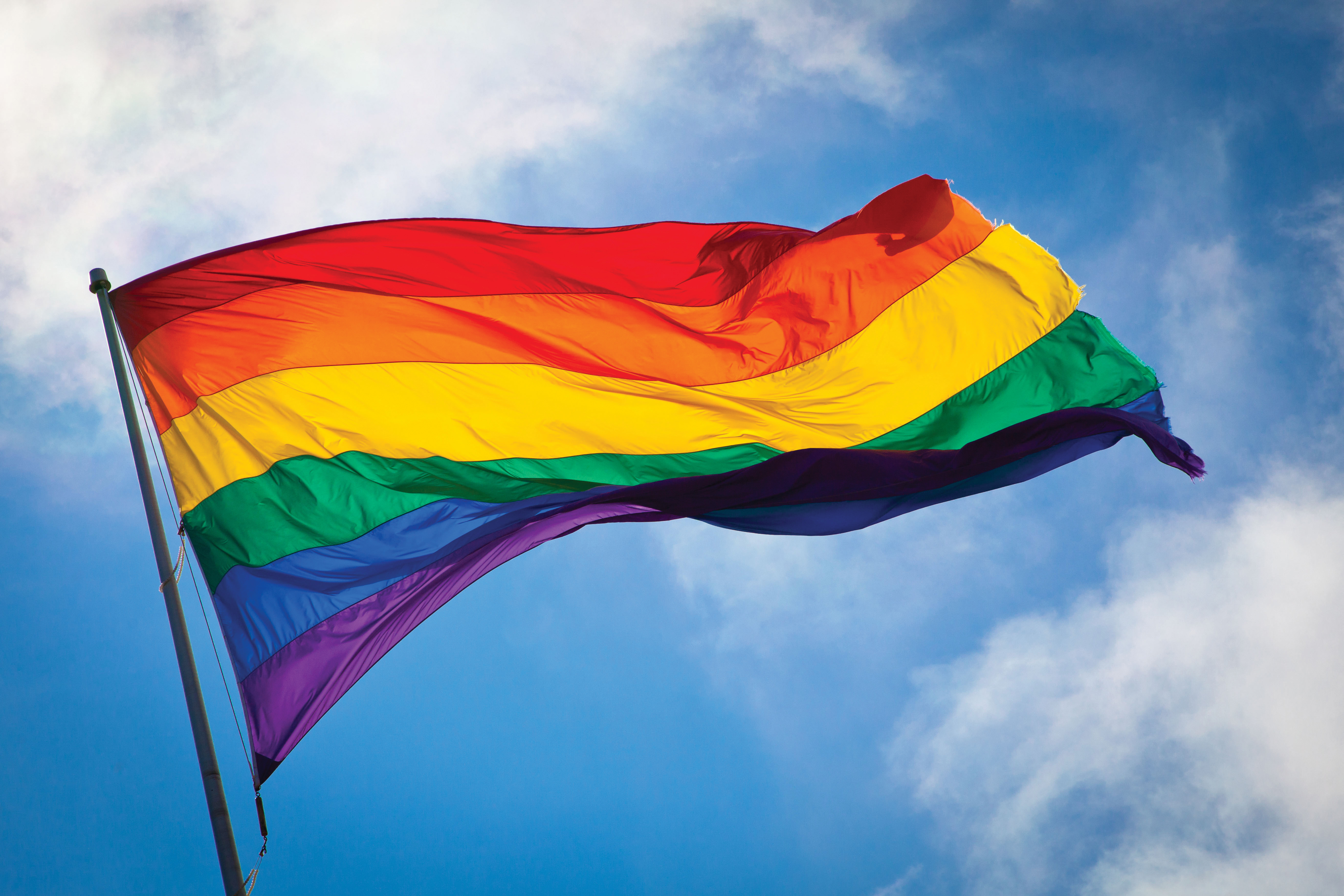 IN THE NEWS - LGBT History Month and National Coming Out Day ...